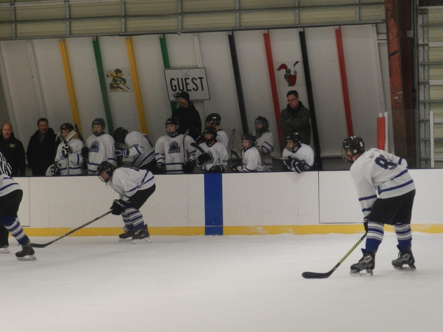 Grizzles on ice!